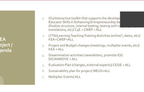 IDEA Virtual Meeting 3 Agenda